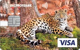 Visa Classic «Леопардесса Бэри»