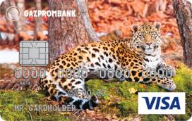 «Леопардесса Бэри» Visa Classic