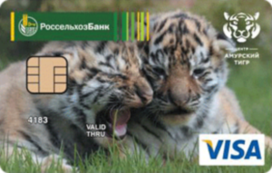 Visa Classic «Амурский тигр»